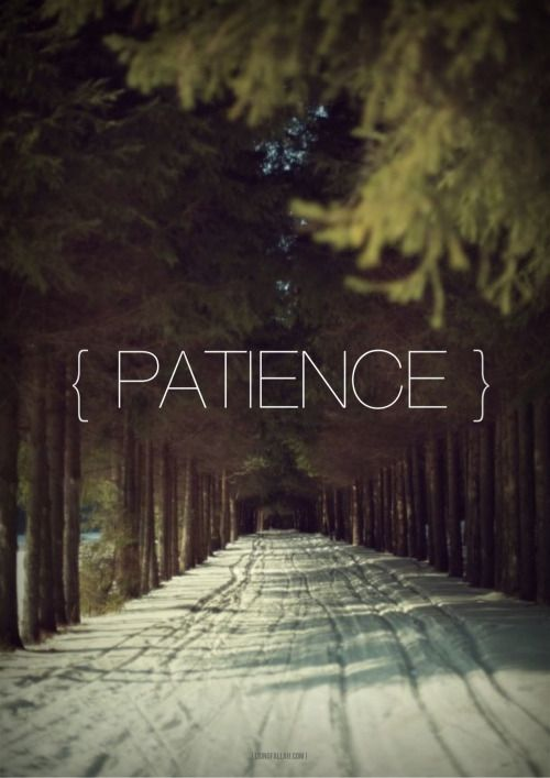 So be patient with a beautiful patience. (70:5) - www.lionofAllah.com