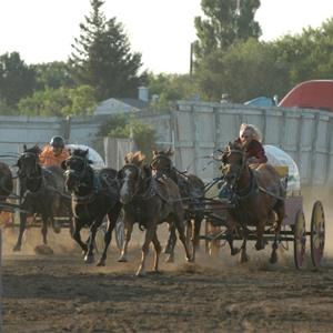 MB Chuckwagon Races