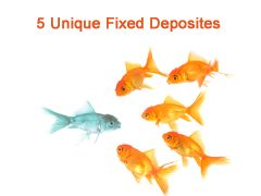 We are herewith best unique fixed deposit schemes for Investment in India for 2013.