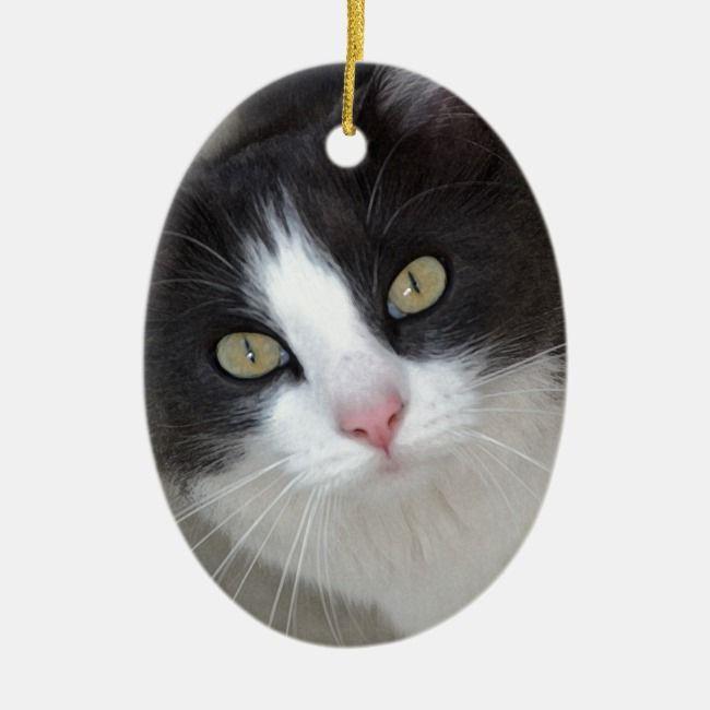 Pretty Gray And White Cat Ceramic Ornament Zazzle Com In 2020 Grey And White Cat White Cat Cat Christmas Ornaments