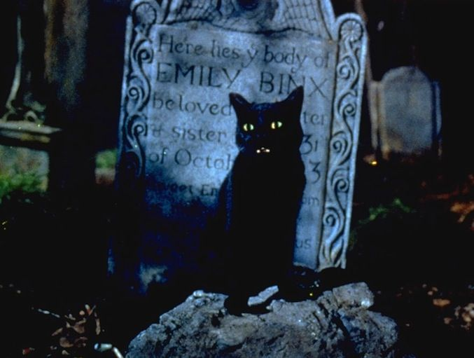 Hocus Pocus - Thackery Binx. Even though he lost his sister and was doomed to live forever as a black cat, he finds a way to be awesome.