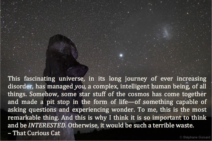 """This fascinating universe..."" http://thatcuriouscat.blogspot.com/2014/01/act-accordingly.html"