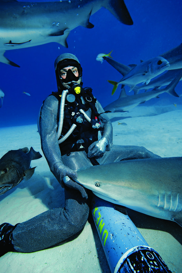 What It's Like to Lull a Shark to Sleep | Scuba Diving
