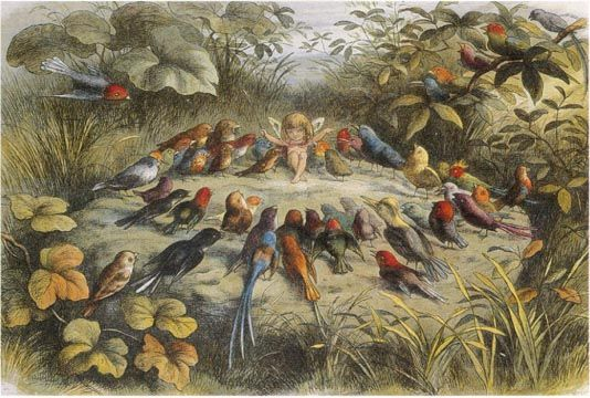 "My favourite one... I just love this!  A Rehearsal in Fairy Land by Richard ""Dicky"" Doyle, 1824-83. 1870. Lithograph on paper:"