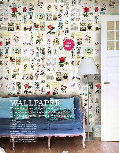vintage book illustrations turned wallpaper: Illustrations Turned, Vintage Illustrations, Vintage Book, Book Illustrations, Butterfly Wallpapers, Botanical Wallpaper