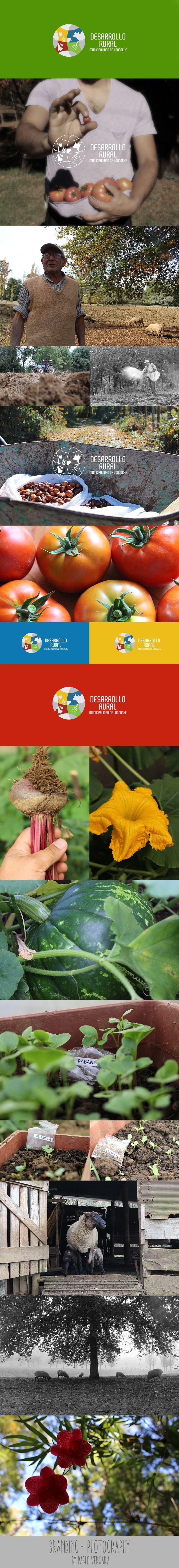 Desarrollo Rural, Loncoche - Branding + Photography by Pablo Vergara - 2015