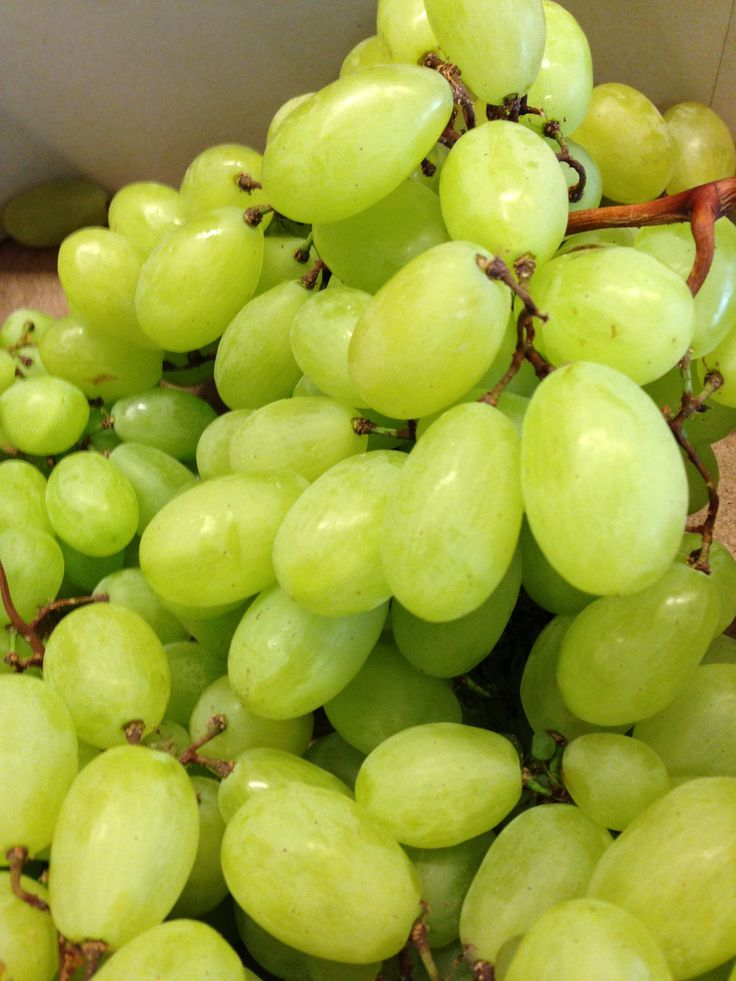 17 best images about uvas on pinterest heart disease vineyard and green grapes - Table grapes vs wine grapes ...