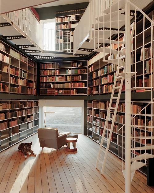 Now that's a cool idea. A floor-length window looking out on a gorgeous view in a library! This space is obviously meant to enjoy a book, and not to show off. Could use some comfy floor furnishings though :)