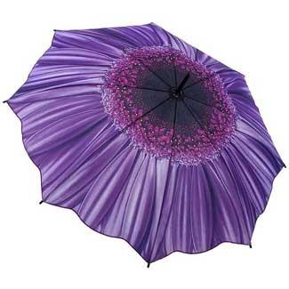 Galleria Art Print Walking Length Umbrella - Purple Daisy £28.00