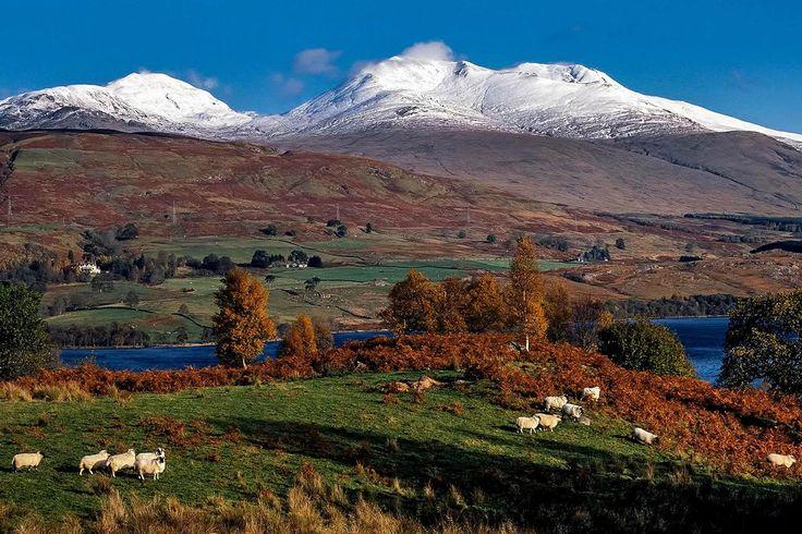Trouvez une retraite différente en Écosse cet hiver grâce à notre sélection, des pods de camping sur Skye aux cabanes de campagne avec jacuzzi.