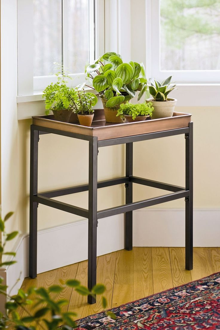 1000 ideas about indoor plant stands on pinterest plant Plant stands for indoors