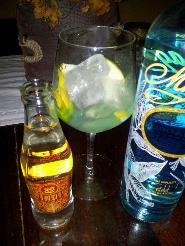 GinTonic de Magellan con Indi. Botánicos: Manzana y cascara de limón.