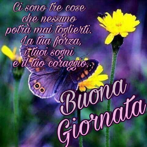 Buona giornata buongiorno fiori farfalle flowers for Immagini divertenti buona giornata