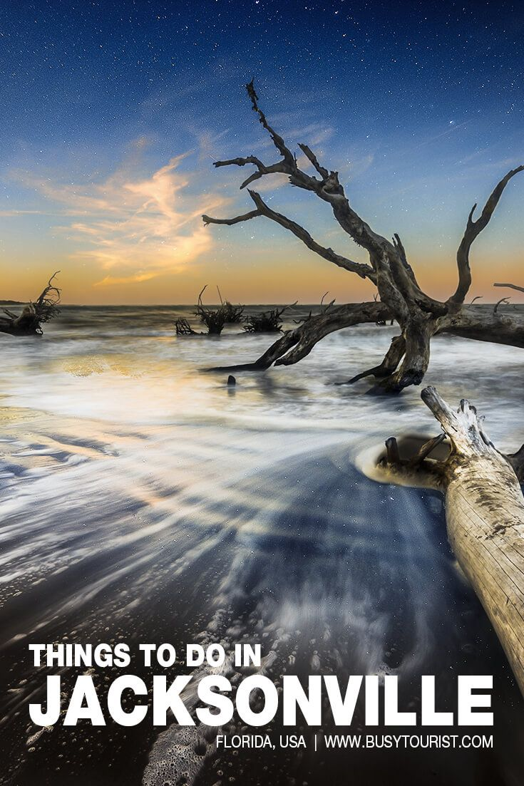 64 Best Fun Things To Do In Jacksonville Florida Vacation Usa Fun Things To Do Florida Travel
