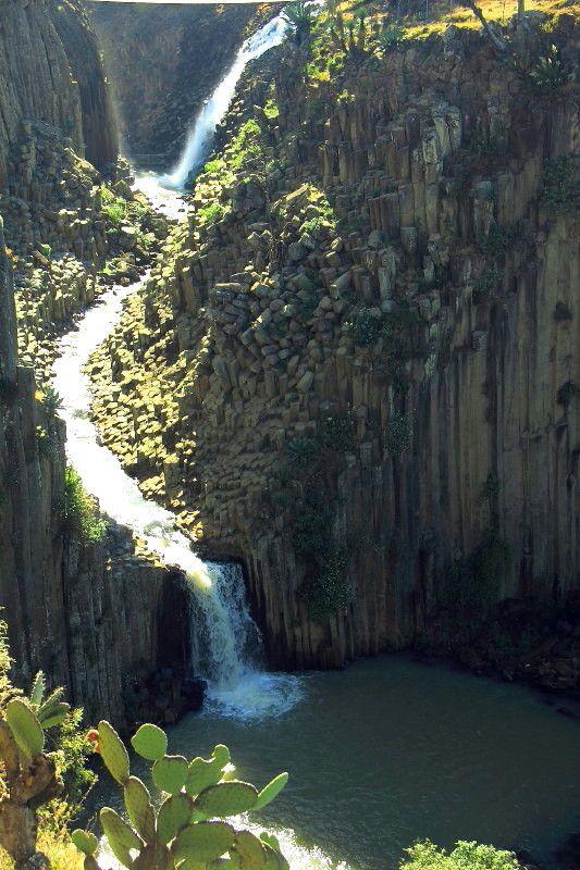 Prismas Basalticos  | Prismas basalticos Huasca Hidalgo Mexico - Galerías :: Fotonatura.org