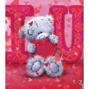 Teddy in Love – Sognando i Sogni…