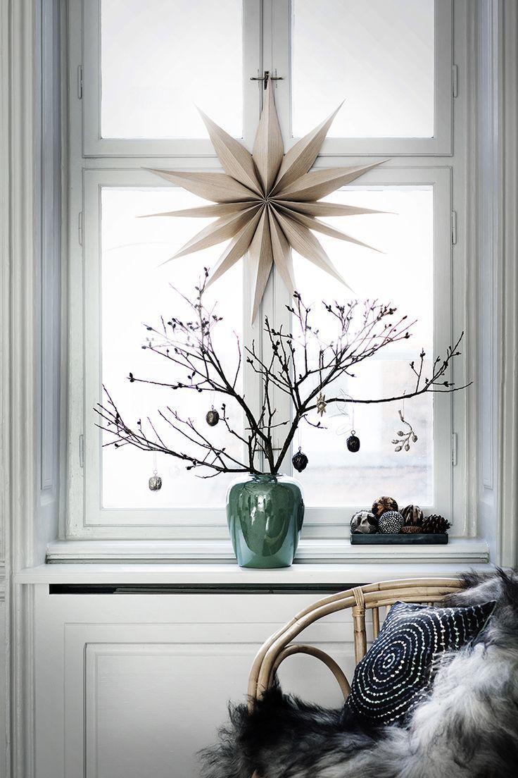 Toller Weihnachtsstern für die weihnachtlich dekorierte Fensterbank