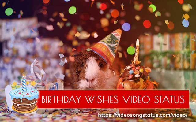 Happy Birthday Whatsapp Status Videos In Hindi Gujarati