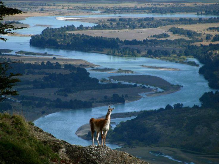 Douglas+Tompkins+amerikai+milliárdos+özvegye,+férje+akaratát+teljesítve,+400+ezer+hektár+földet+ajándékozott+a+chilei+államnak+nemzeti+parkok+létesítésére+és+a+biodiverzitás+megőrzésére.+A+történelemben+ez+a+legnagyobb+földadomány,+amelyet+magánszemély+az+egy+államnak+–…