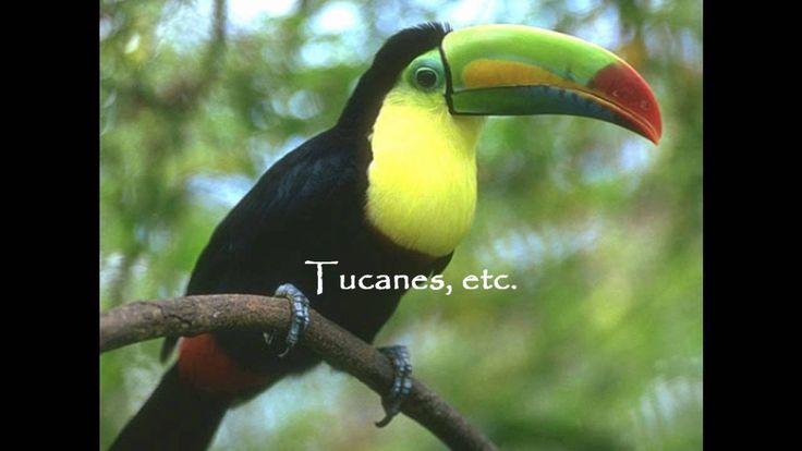 Principales Ecosistemas de México