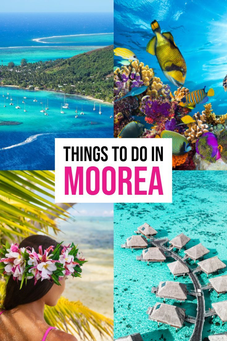 Best Things To Do In Moorea Steal This Guide For Your Trip