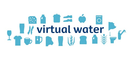 "Virtual Water  A Concept by Prof Tony Allan     The groundbreaking new concept that reveals the true and hazardous extent of our everyday water consumption is described in Allan's book: Virtual Water: Tackling the Threat to Our Planet's Most Precious Resource"" (2011)."