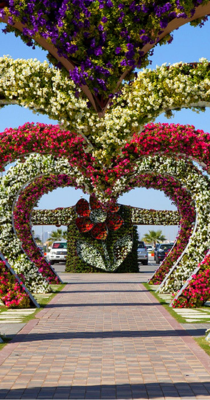 Dubai in 2 Days (With images) Miracle garden