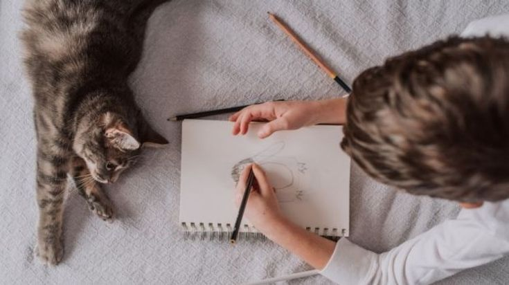 Keeping up familiar routines with your pets is important when moving house.