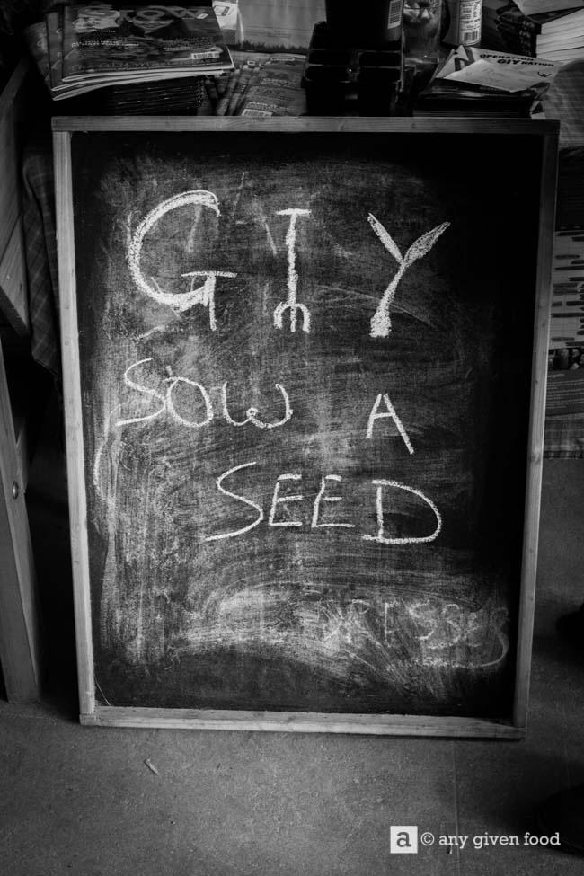GIY Ireland: Sow A Seed blackboard.