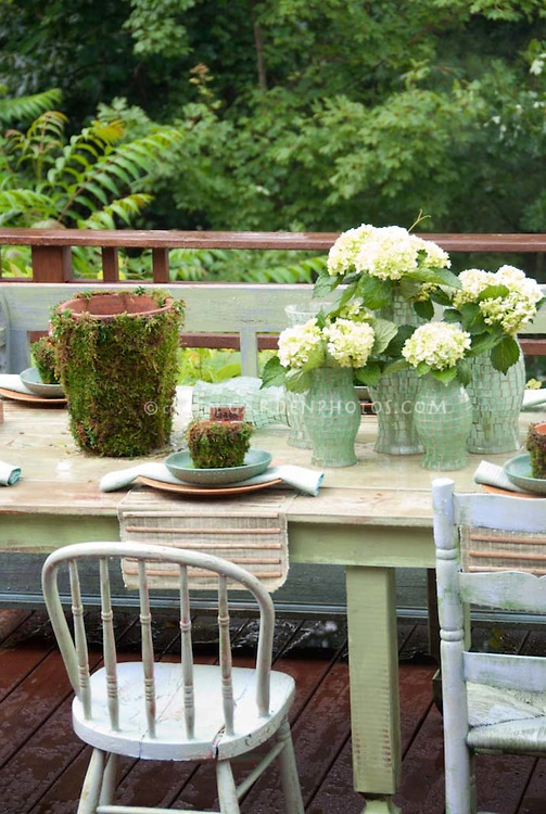 Eating outdoors on deck with rustic table, chairs, country cottage style place settings, hurricane lamps with hydrangeas, pots with moss, in pastel shades