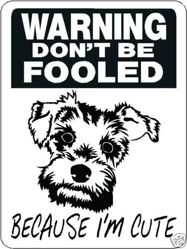 Mini Schnauzer Security Aluminum Sign Warning Dog 3328 | eBay