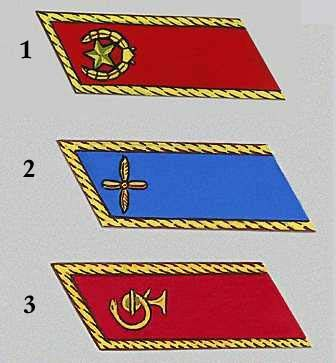 Петлицы к парадно-выходному мундиру (кроме маршалов и генералов): 1. Мотострелковые войска. 2. Авиация. 3. Мед. служба.