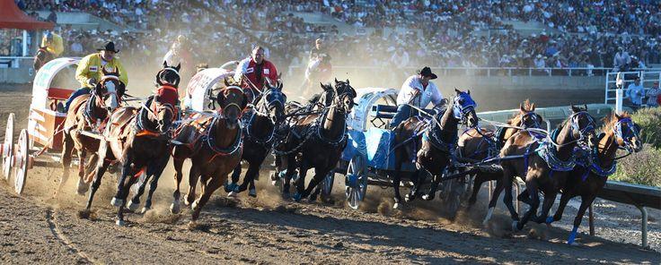 GMC Rangeland Derby - Calgary Stampede