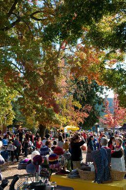 Bright Autumn Festival - Home