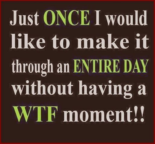 just once funny quotes quote lol funny quote funny quotes humor