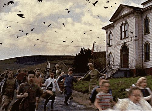 "Alfred Hitchcock's "" The Birds """