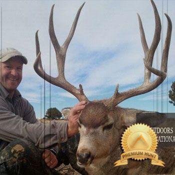 Colorado Archery Deer Hunting (Mule Deer OR Whitetail Deer)