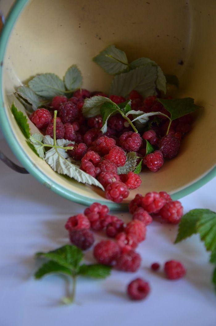 Hallon - Raspberries