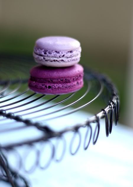 deep purple macarons - lavender coloured blackberry macaron from Whisk ...