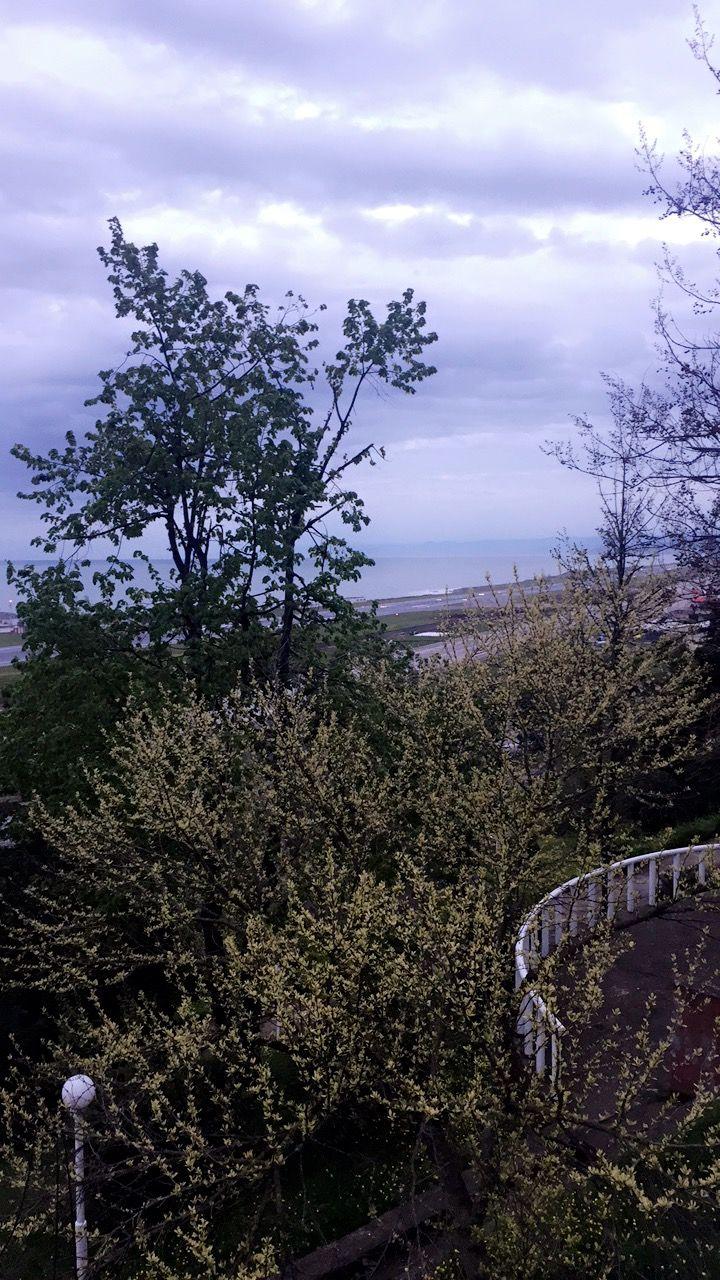 Karadeniz Teknik Üniversitesi #natural #campus #green #serenity