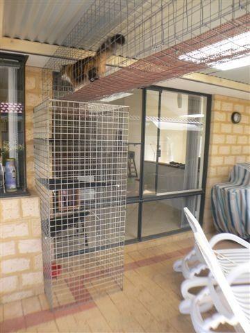 Cat enclosure and Cat Air Walk