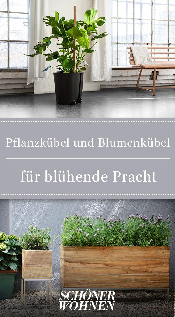 Pflanzkubel Und Blumenkubel Aus Beton Glasfaser Und Metall