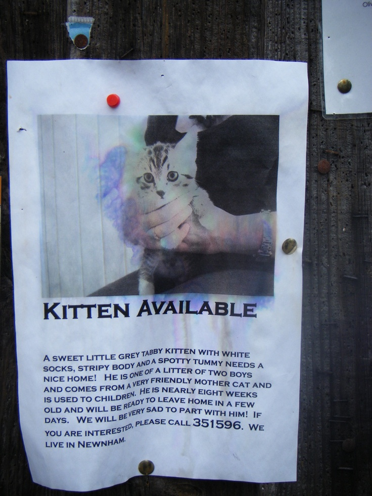 Eddig ez a kedvenc cambridge-i plakátom. Szerintem vicces.