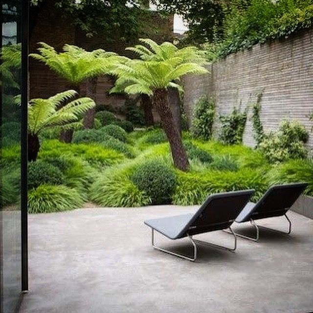 beautiful unruly jungle garden design by tom stuart smith