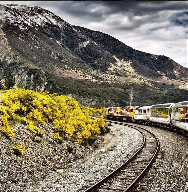 TranzAlpine New Zealand - Perfect opportunity to do some travel photography of the beautiful scenery