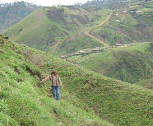 Journal Du Cameroun.com: Cameroun: Cours de statistiques pour promoteurs hôteliers et chefs de postes des frontières