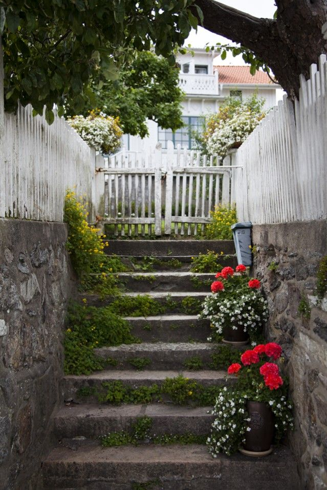 746 Best White Picket Fence Images On Pinterest White Picket Fences Garden Decorations And