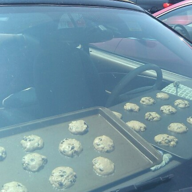 Image result for Took Advantage Of The Heat In Scottsdale And Baked Cookies In The Car