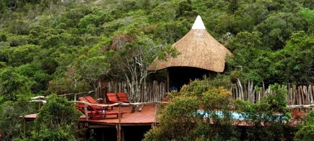 Tree Tops Safari Lodge
