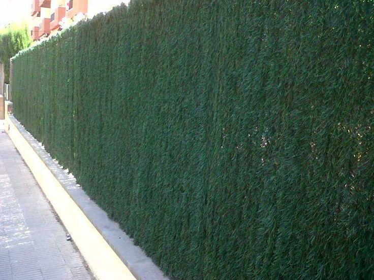 162 mejores im genes de jardines balcones terrazas macetas en pinterest carpinter a - Ocultacion para jardin ...